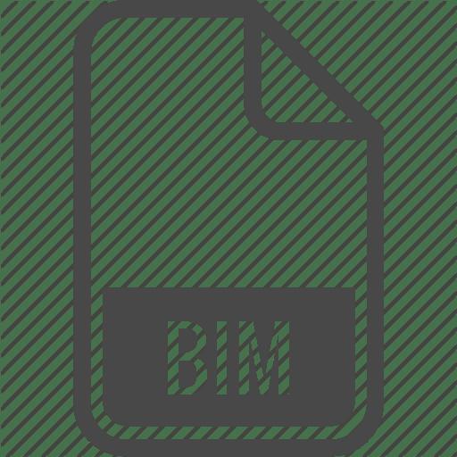 BIM icon